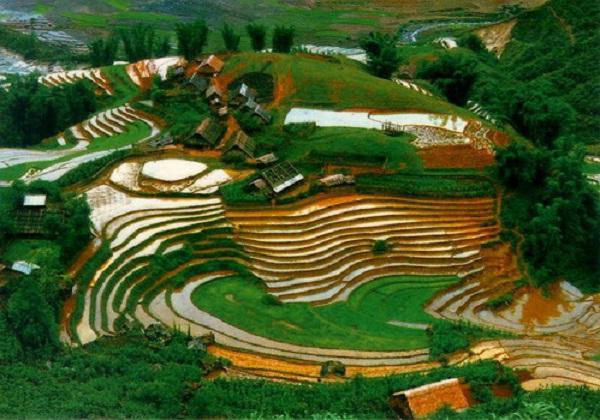 Mai-Chau-paddy-terraces