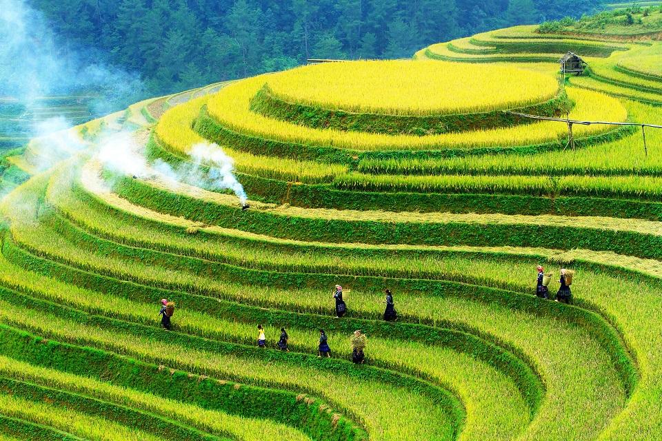 Mù Cang Chải – Ruộng bậc thang đẹp nhất Việt Nam