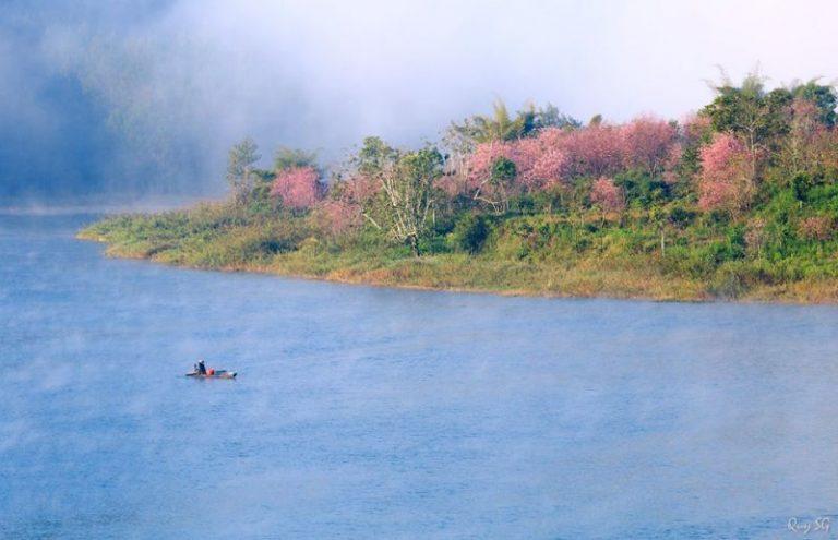 Tuyen-Lam-Lake-768x495