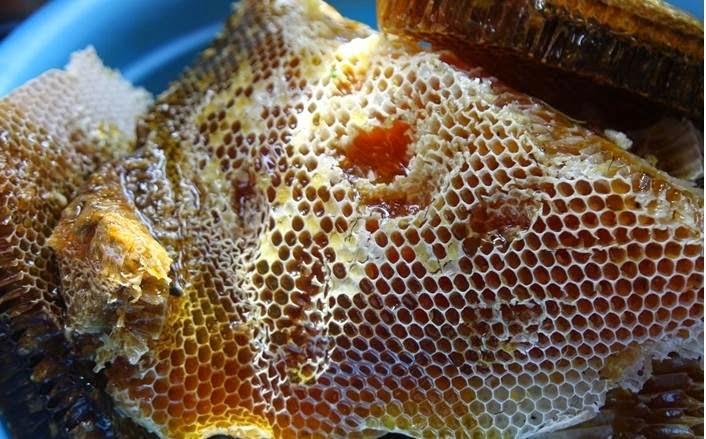 mật-ong-nguyên-chất