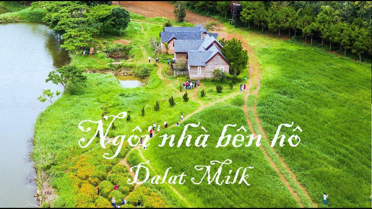 Du lịch khám phá Đà Lạt Milk Farm chi tiết từ A – Z